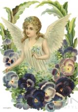 angels_019