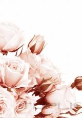 flowers_172_shutterstock_93306925