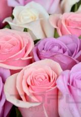 flowers_179_shutterstock_213614035