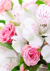 flowers_182