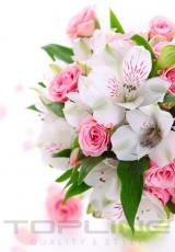 flowers_183